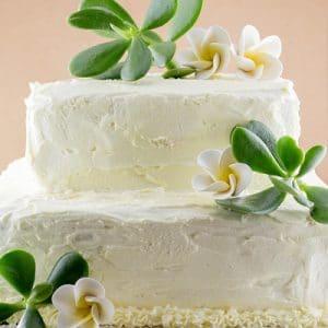 Sunshine Coast Cakes